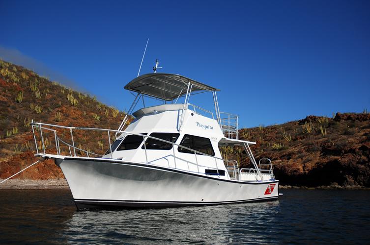 San carlos dives boats sea of cortez for San carlos mexico fishing